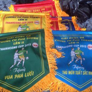 In cờ tại Hồ Chí Minh