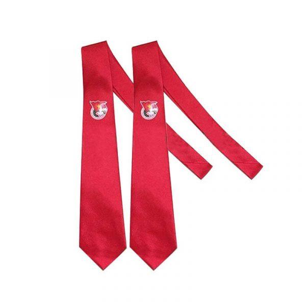 Bán cà vạt đoàn thanh niên màu đỏ cho nam đẹp