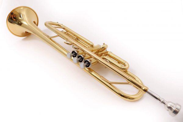 Kèn trumpet dùng để biểu diễn cực đỉnh