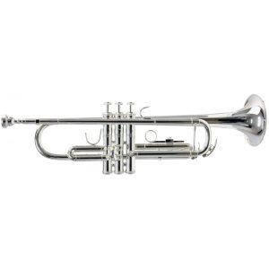 Mua kèn trumpet uy tín, chất lượng